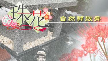 自然葬散骨【珠花】